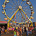 2006_09_09_hebron_fair_33